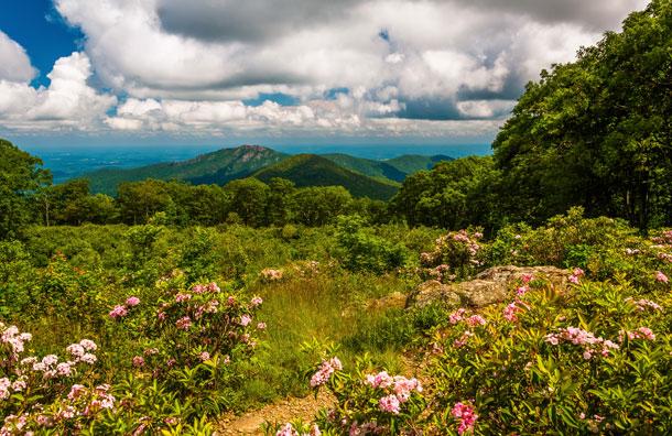 Shenandoah National Park in Virginia