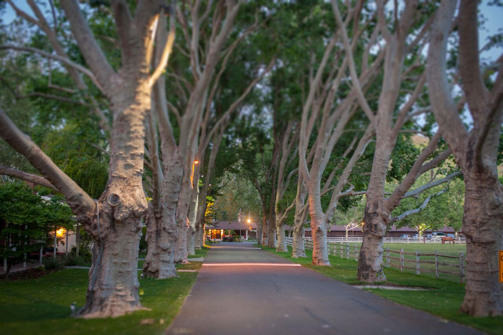 Alisal Guest Ranch & Resort; Courtesy of Alisal Guest Ranch & Resort