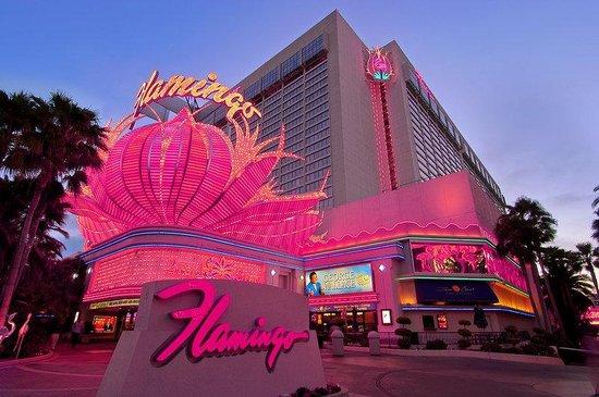 flamingo hotel casino