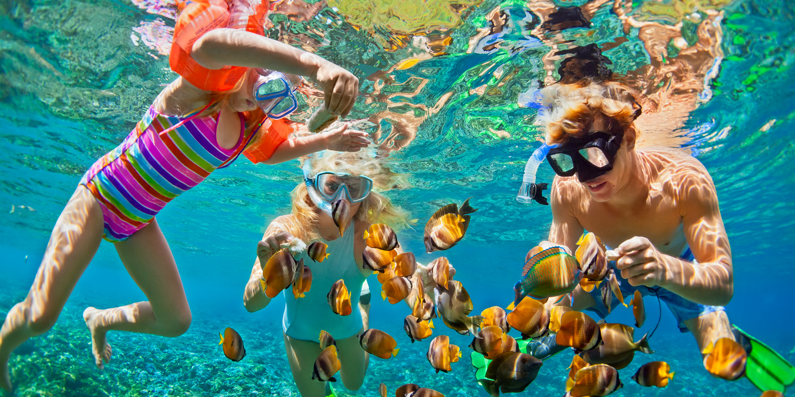 father, mother, child in snorkeling mask dive underwater with tropical fishes in coral reef sea pool; Courtesy of Tropical studio/Shutterstock