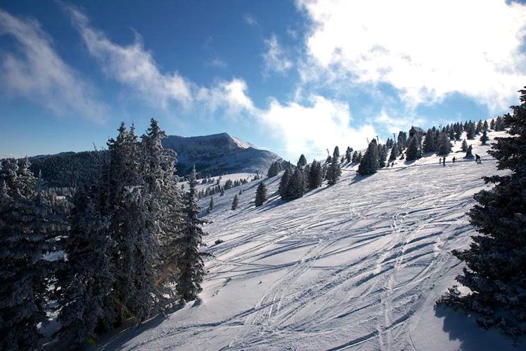 Ski Apache; Courtesy of Ski Apache
