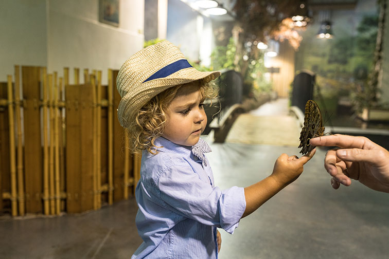 Young Boy at Audobon Insectarium in New Orleans, LA