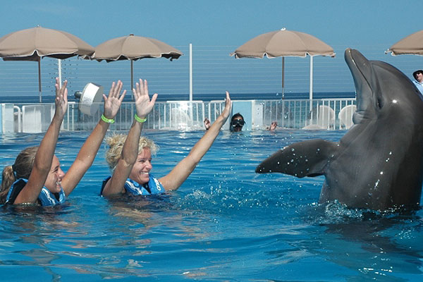 Mother and daughter playing with a dolphin at the Marineland Dolphin Adventure in St. Augustine, Florida.