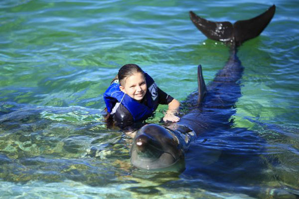 Little girl swimming with a dolphin at Sea Life Park on Oahu, Hawaii.