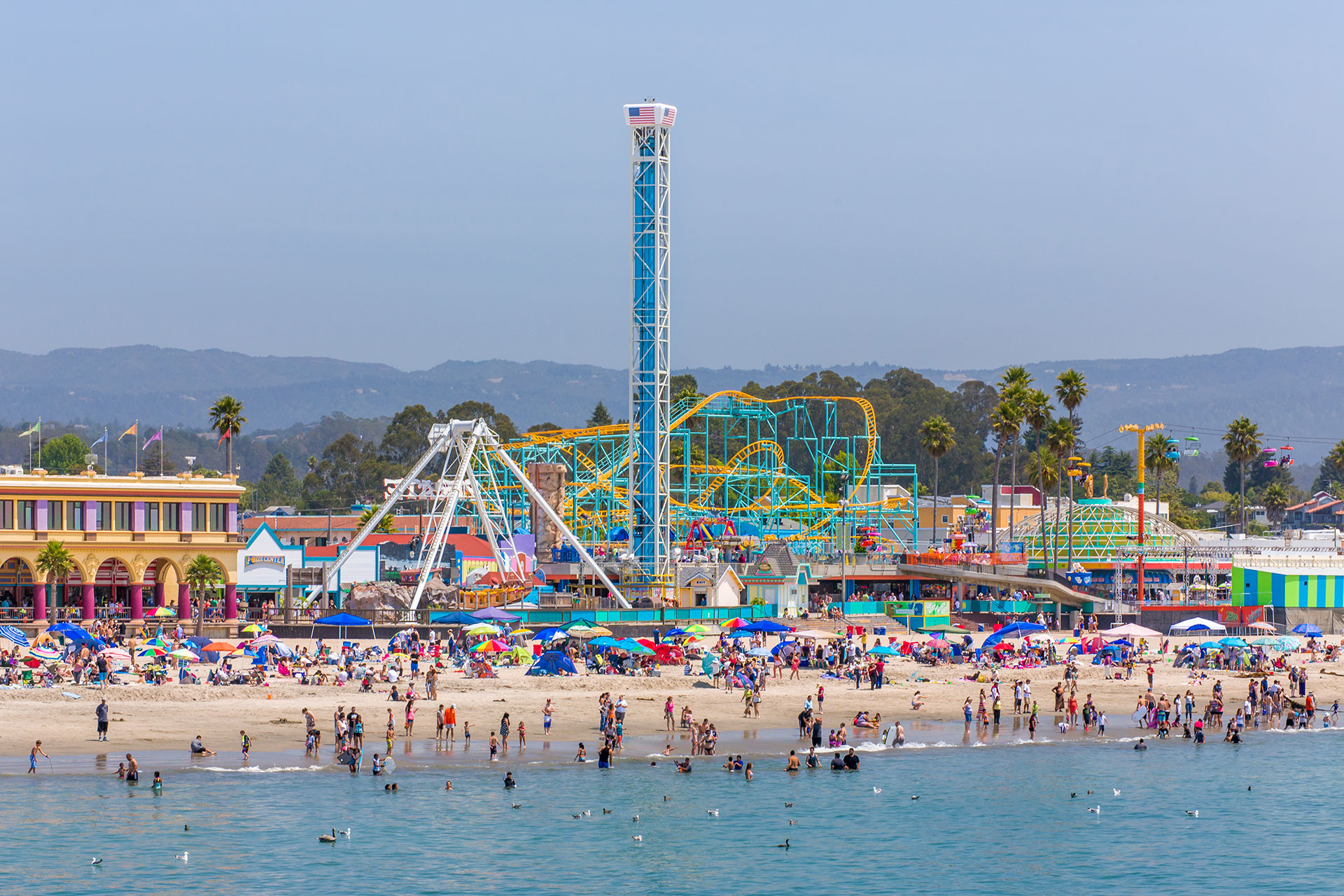 Santa Cruz Boardwalk; Courtesy of Ken Wolter/Shutterstock.com