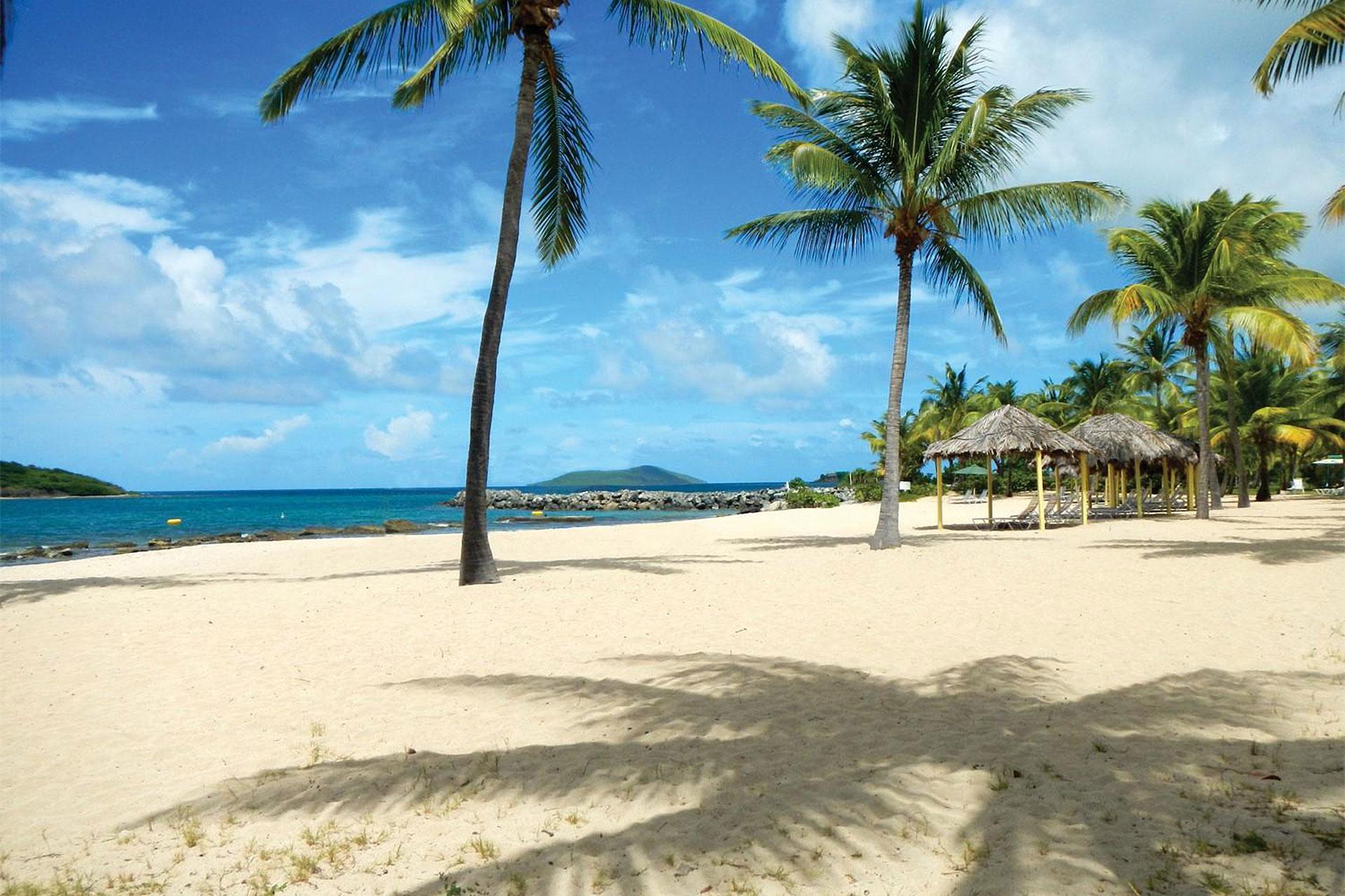 Tamarind Reef Resort in St. Croix; Courtesy of Tamarind Reef Resort