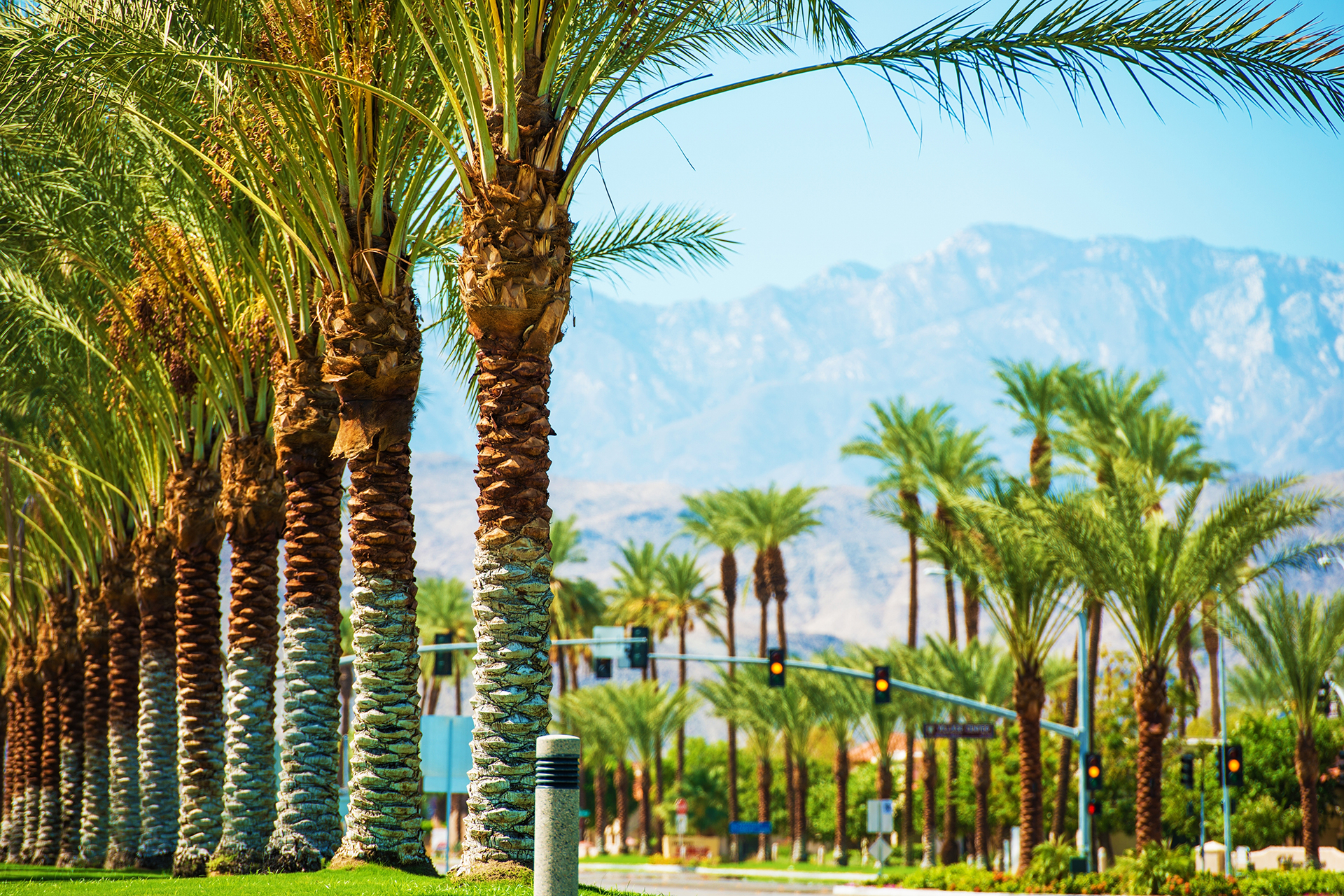 9 Best Luxury Hotels In Palm Springs For Families Family Vacation