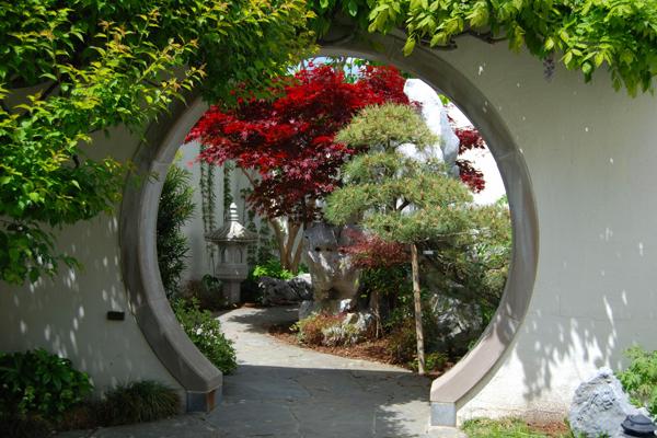 Bonsai garden at the national arboretum.