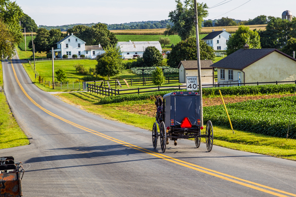 Amish horse and buggy on a road in Lancaster.