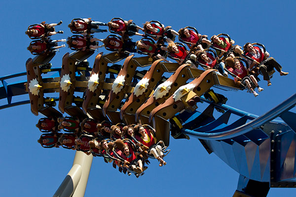 Wild Eagle Coming Around Corner at Dollywood in Pigeon Forge, Tennessee.
