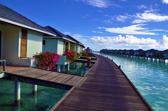 Sun Island Resort Nalaguraidhoo Island What To Know