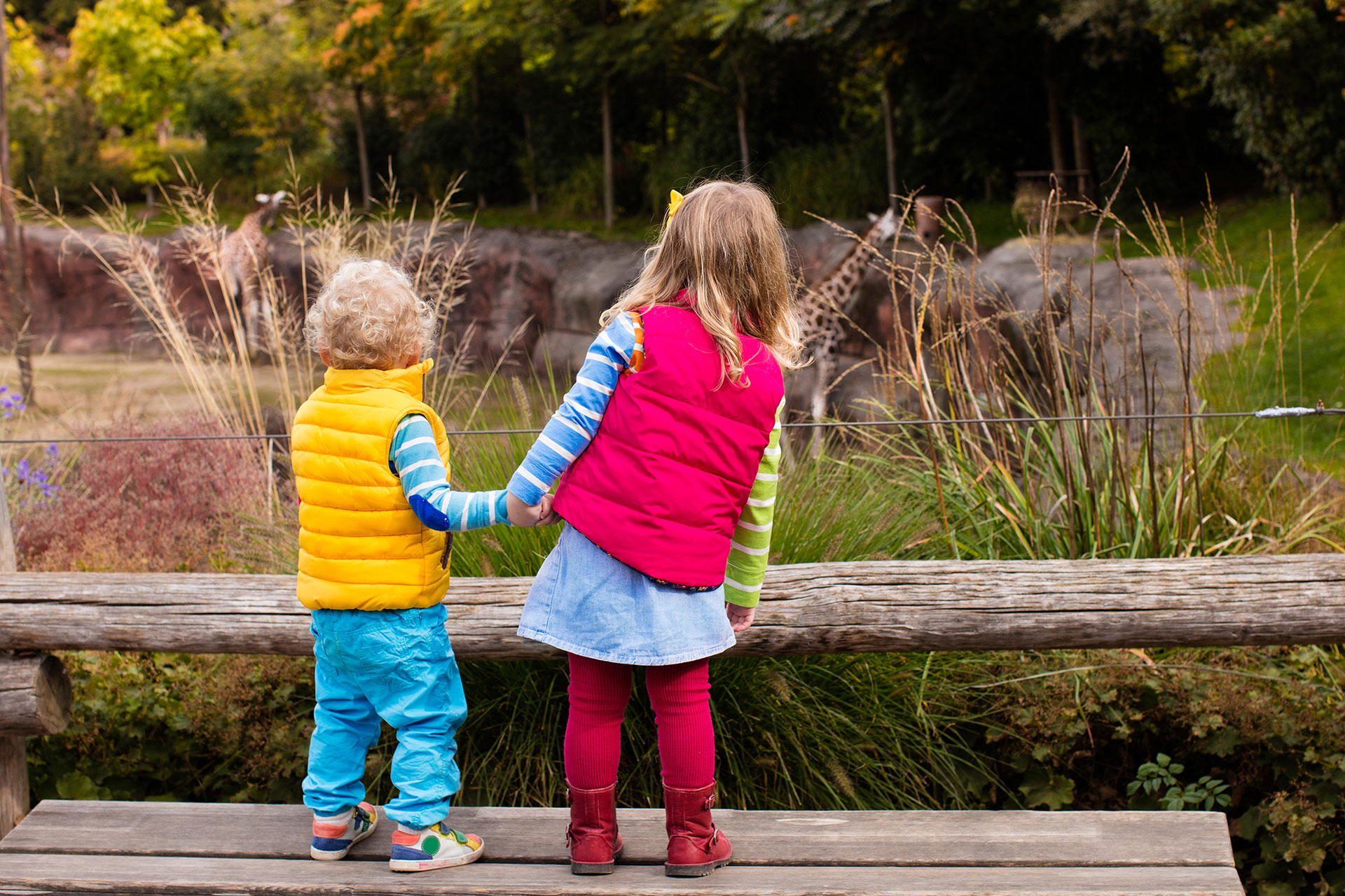 A brother and sister holding hands at the zoo.