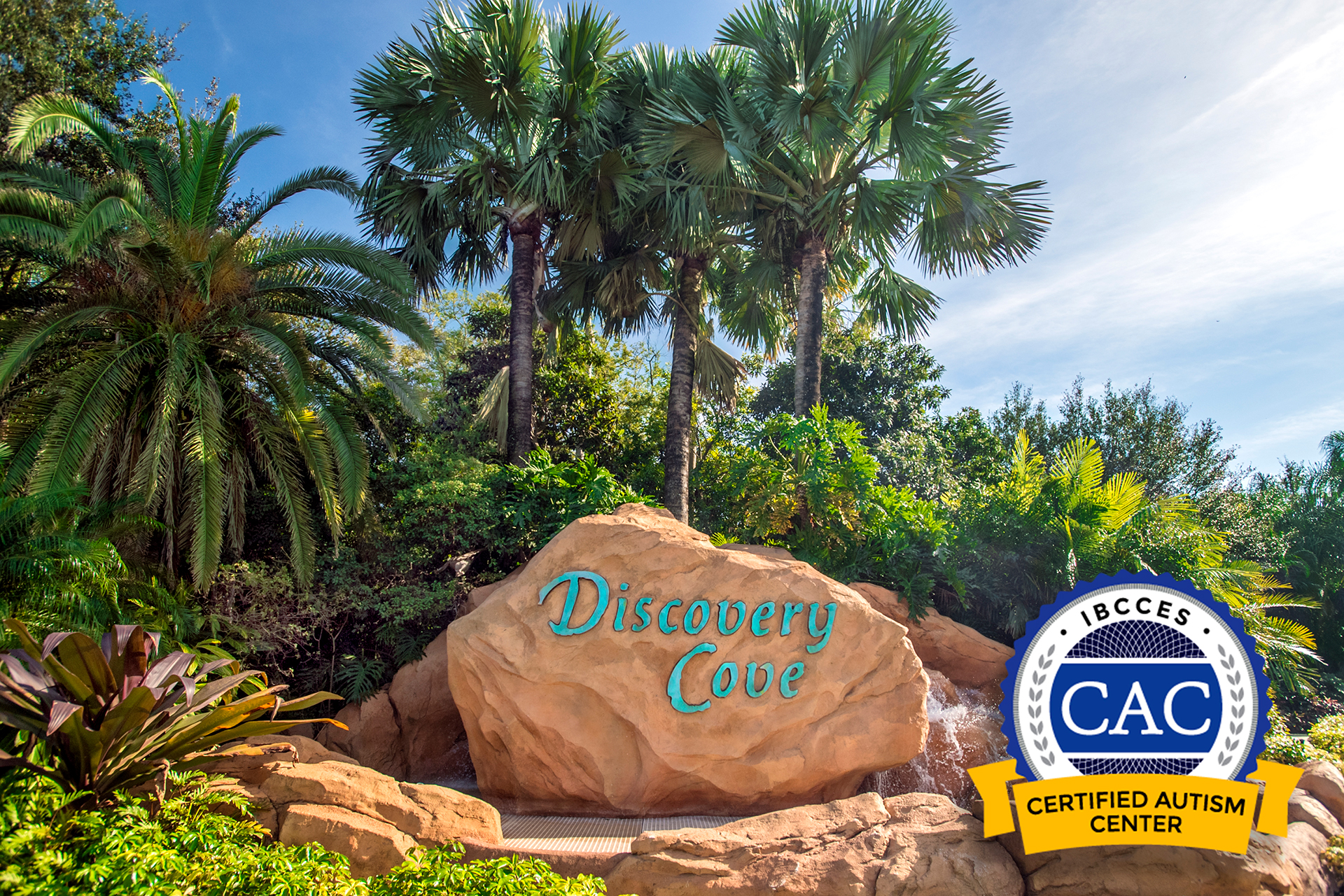 Discovery Cove in Orlando - Certified Autism Center; Courtesy of Discovery Cove