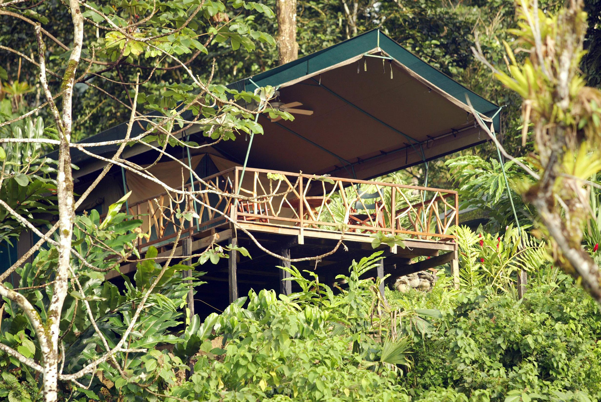 Rafiki Safari Lodge in Costa Rica; Courtesy of Rafiki Safari Lodge