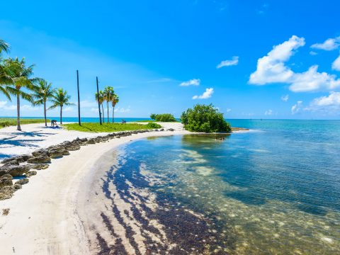 Sombrero Beach in Marathon, Florida; Courtesy of Simon Dannhauer/Shutterstock.com