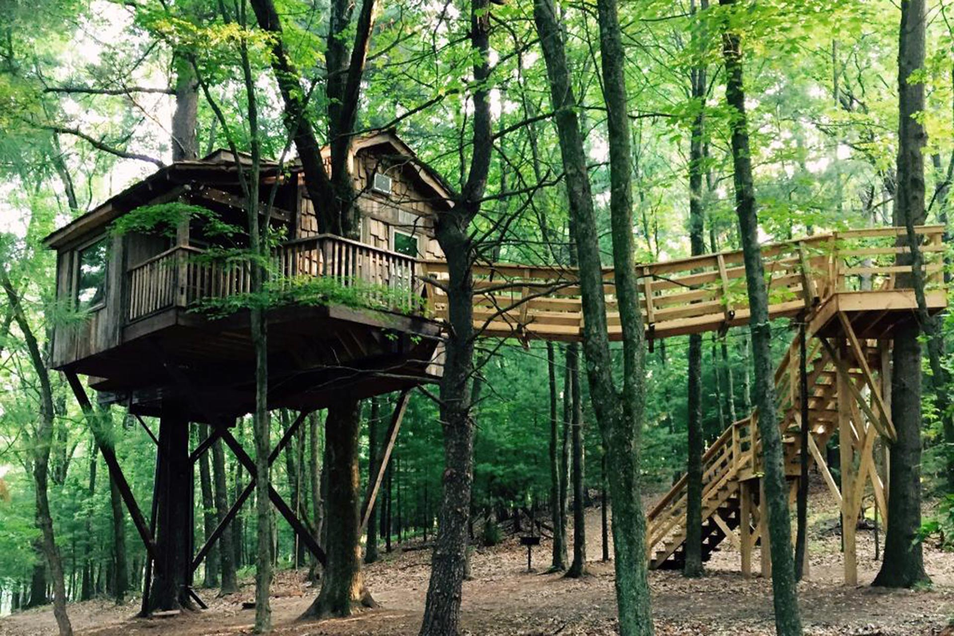 The Mohicans Treehouses in Glenmont, OH; Courtesy of TripAdvisor Traveler/TravelinStyle30