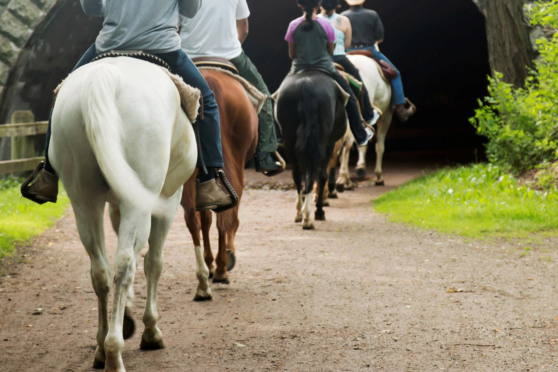 A family horseback riding; Courtesy of WoodysPhotos/Shutterstock