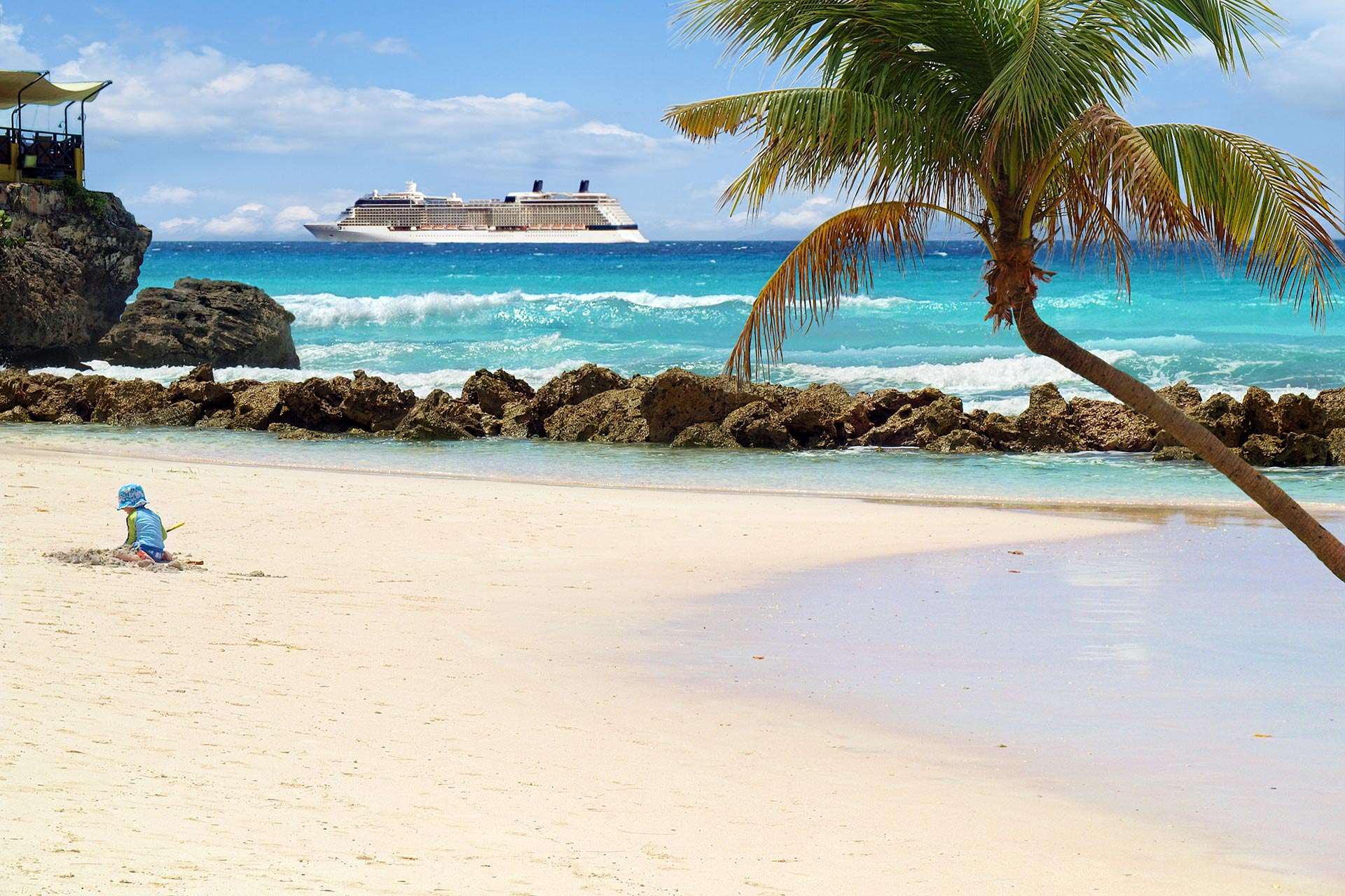 Tropical beach with palm tree and cruise ship in distance