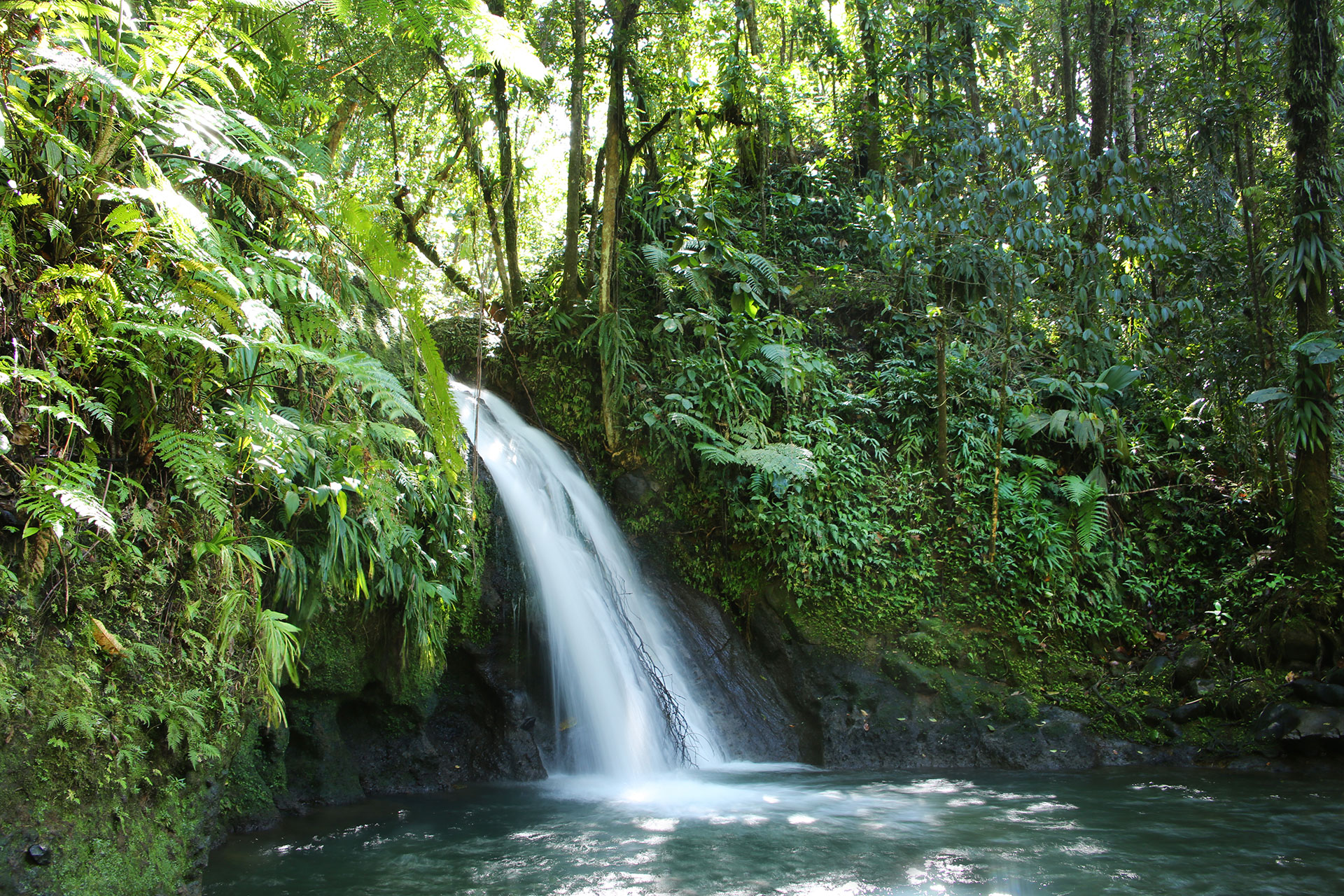 Waterfalls in Guadeloupe