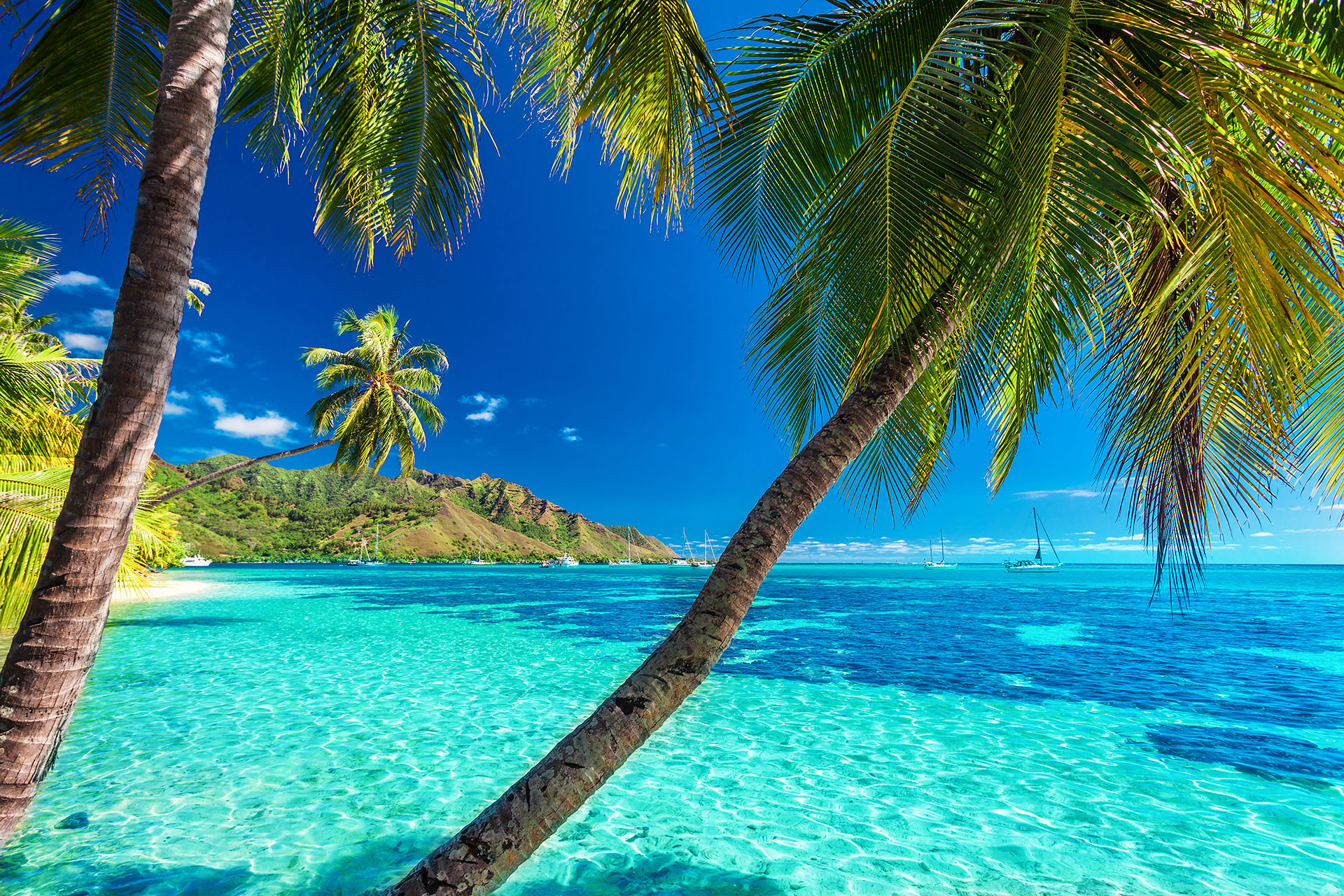 Blue waters in Tahiti