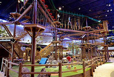 Great Wolf Lodge Lagrange Lagrange Ga 2019 Review