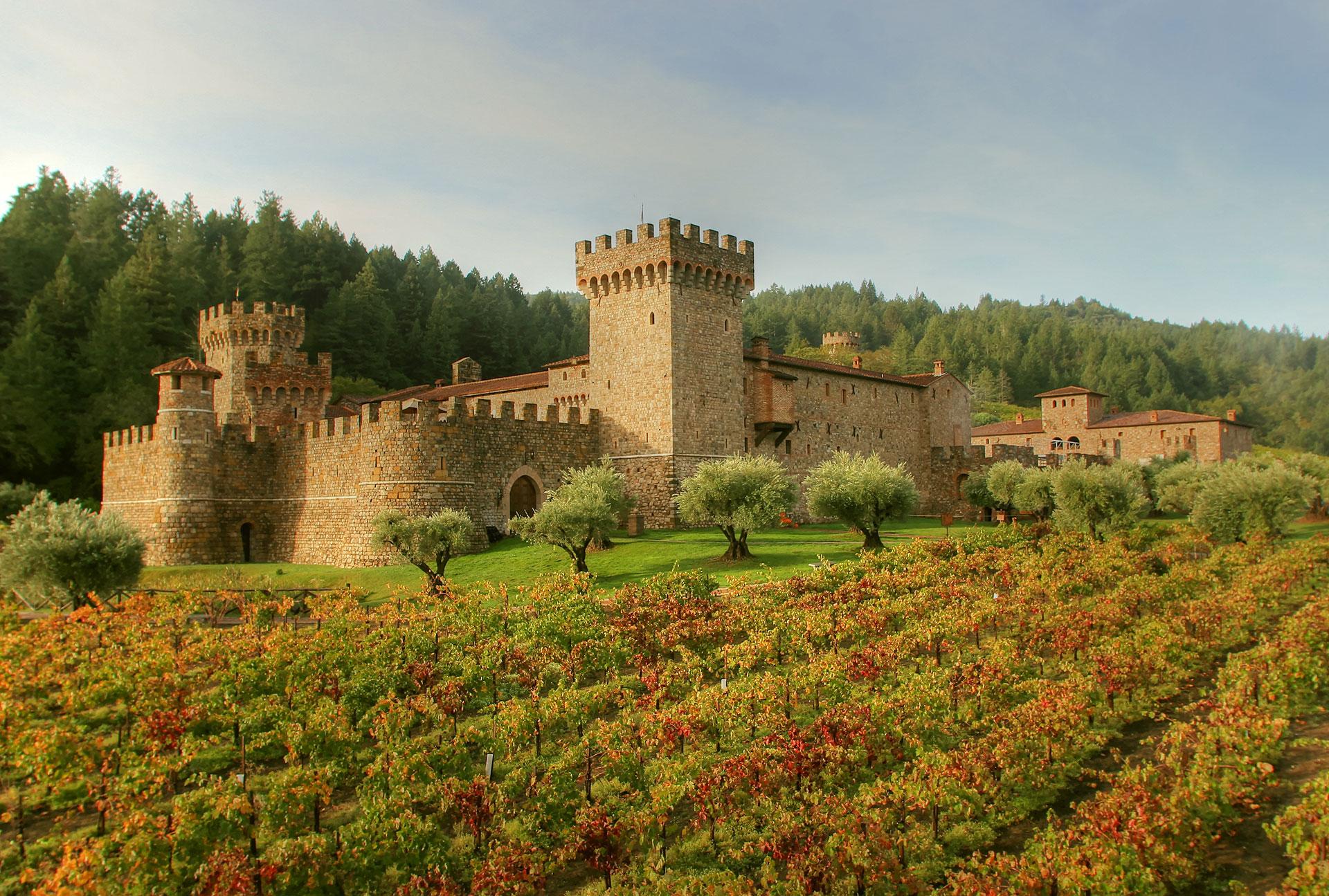 Castello di Amorosa castle exterior and vineyard
