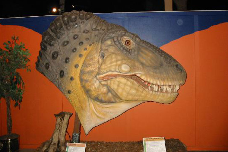 Dinosaur Journey Museum; Courtesy of TripAdvisor Traveler WorryFreePhilly