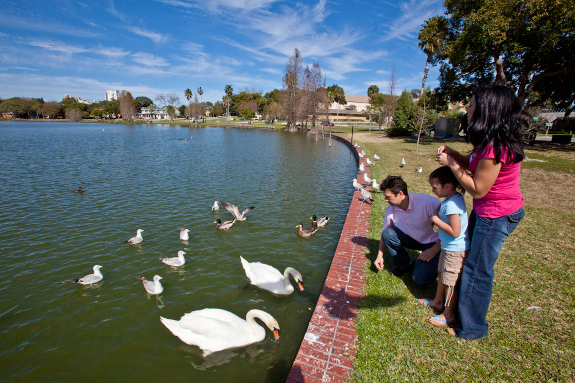 Family Feeding Ducks in Lakeland, FL