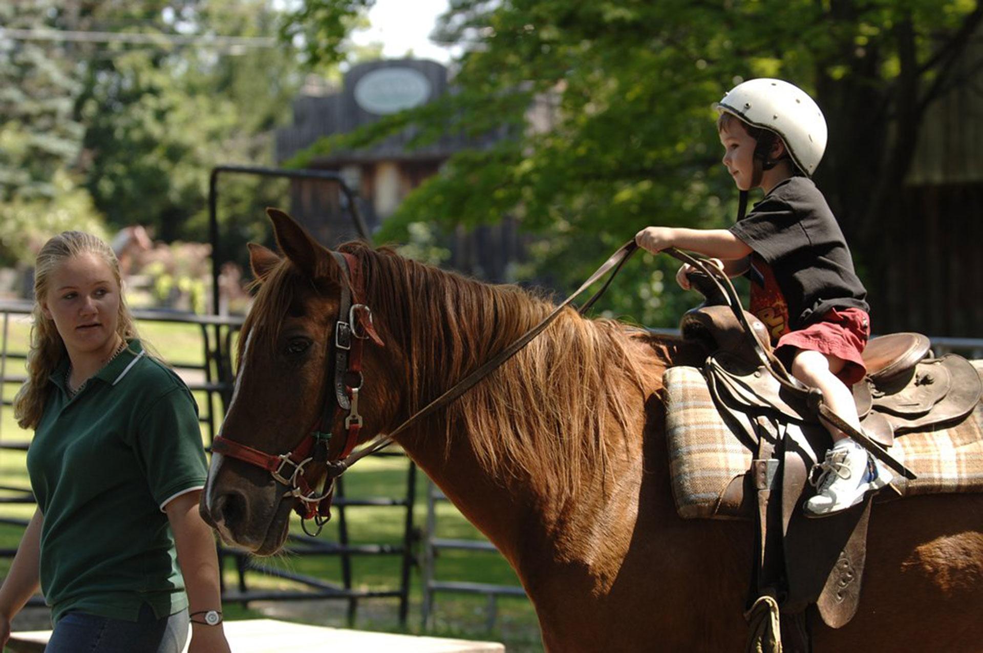 Horseback Riding at Pine Ridge Dude Ranch; Courtesy of Pine Ridge Dude Ranch