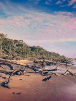 Amelia Island Family Vacation