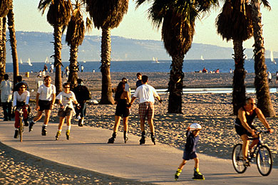 Santa Monica Venice Bike Path Ca 2018 Review Ratings Family Vacation Critic