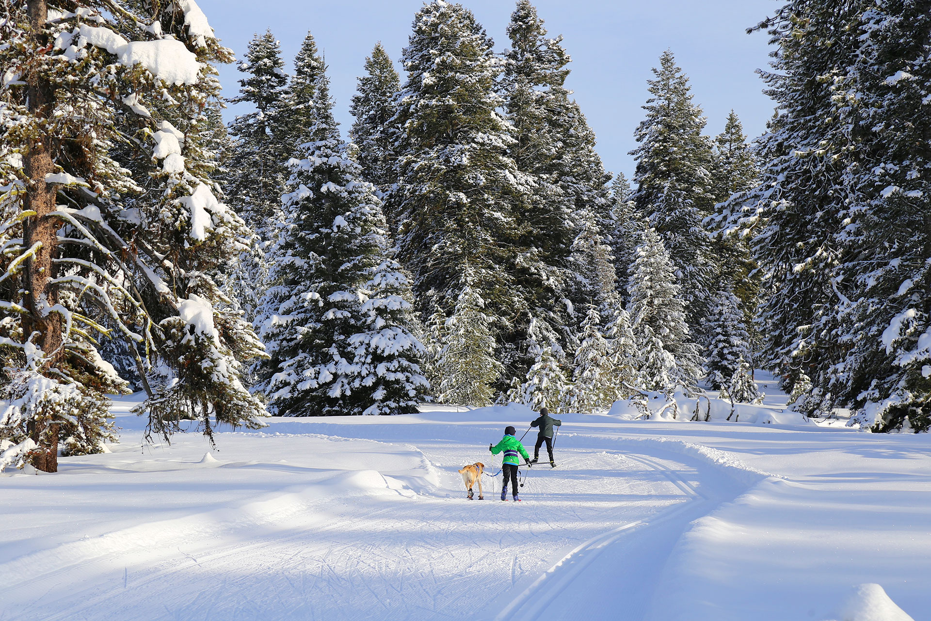 McCall, Idaho; Courtesy of CSNafzger/Shutterstock.com
