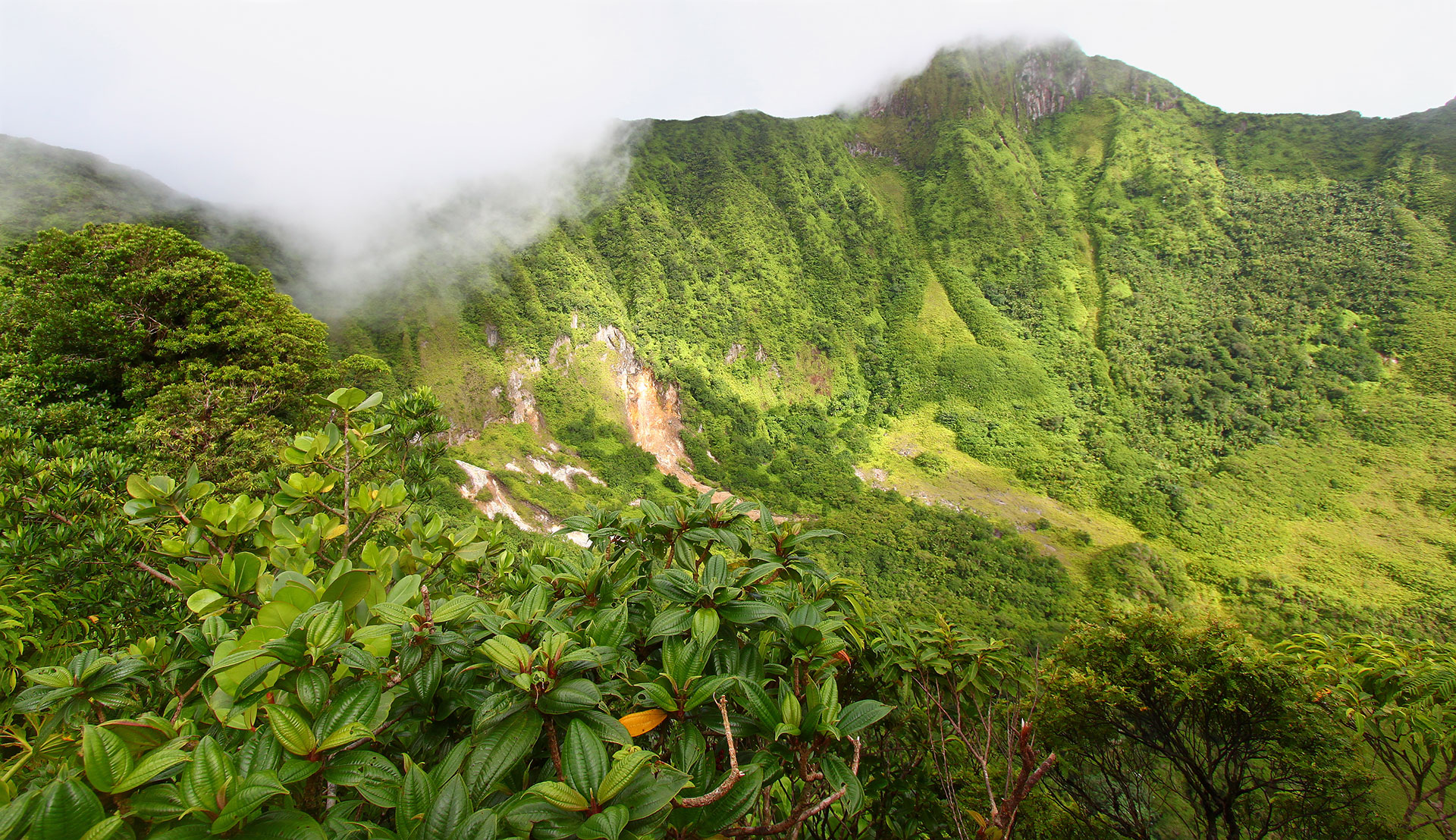 Mount Liamuiga; Courtesy of Jason Patrick Ross/Shutterstock.com