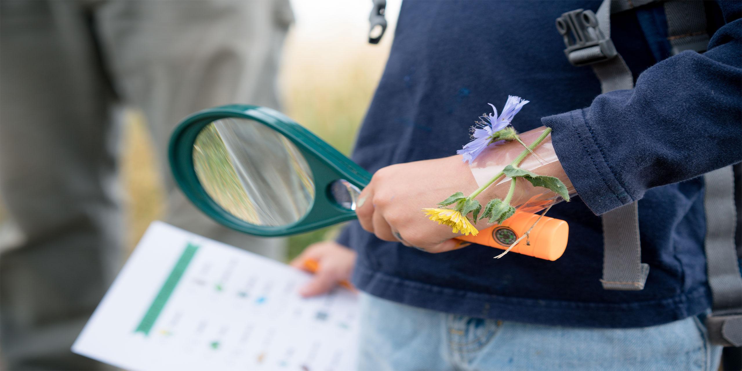 Scavenger Hunt; Courtesy of Robin Craig/Shutterstock.com