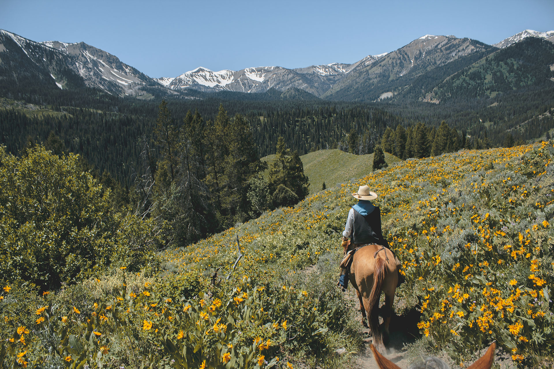 Horseback Riding in Grand Teton National Park; Courtesy of William Shafer/Shutterstock.com