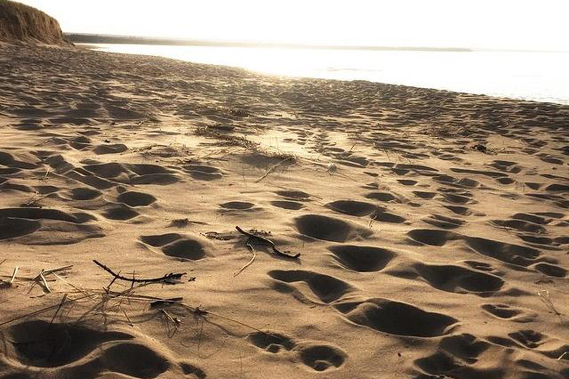 Singing Sands in Bete Grise, Michigan; Courtesy of Instagram User @KelsNewcomb/Kelsie Newcomb