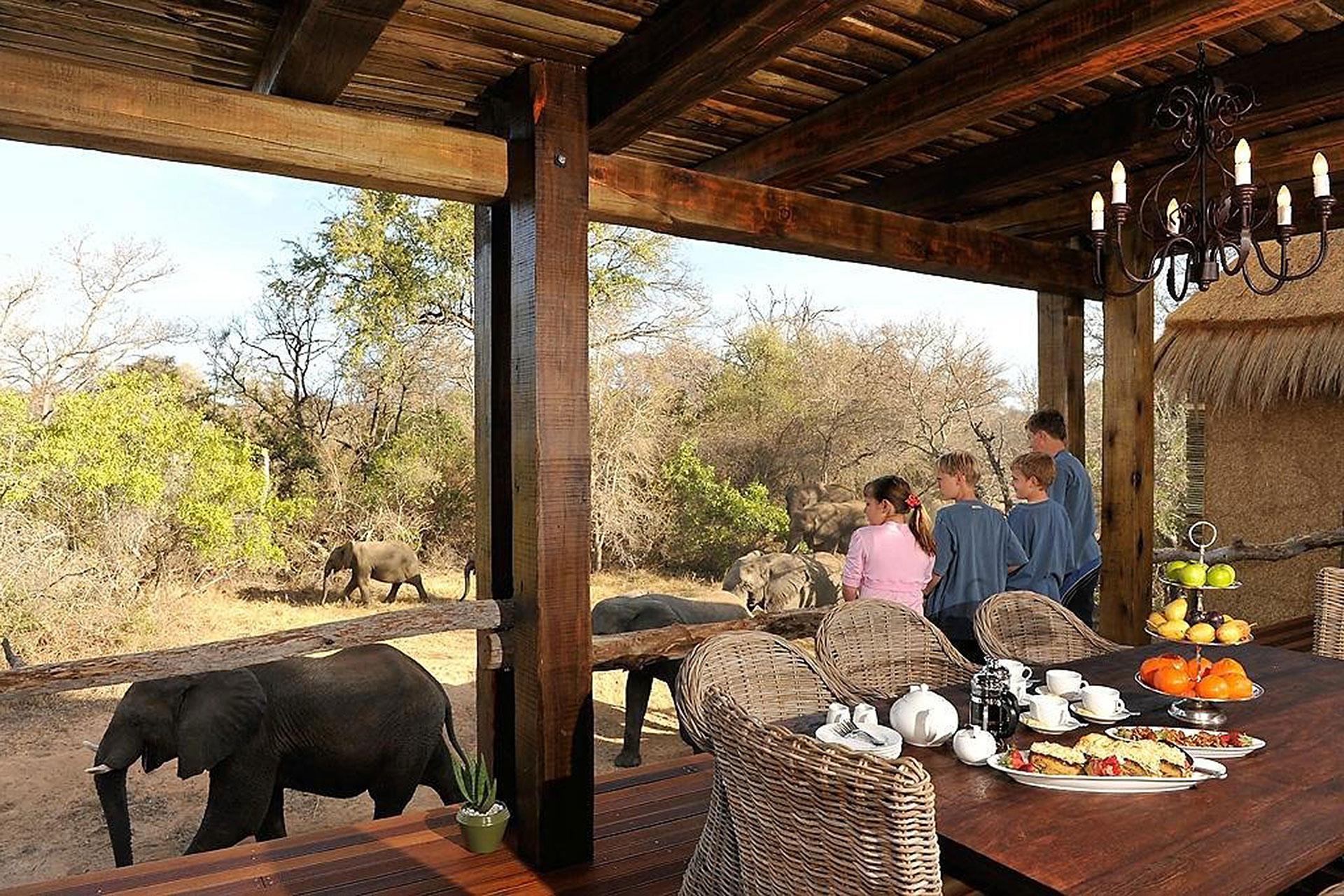 Family at Jambulani Safari in South Africa; Courtesy of Jambulani Safari