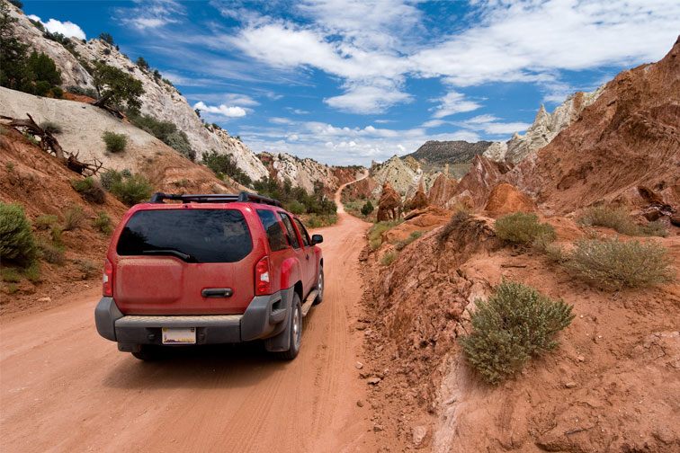 Drive in Grand Canyon; Courtesy of Geir Olav Lyngfjell/Shutterstock.com