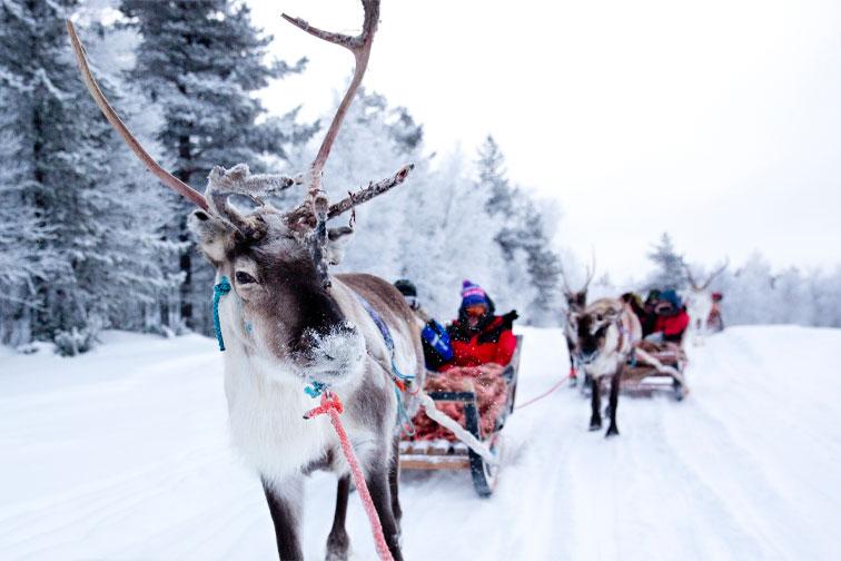 Lapland, Finland; Courtesy of Iris van den Broek/Shutterstock.com