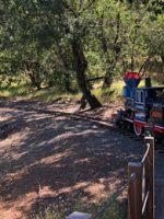 Howarth Park in Santa Rosa; Courtesy of TripAdvisor Traveler Nathan R