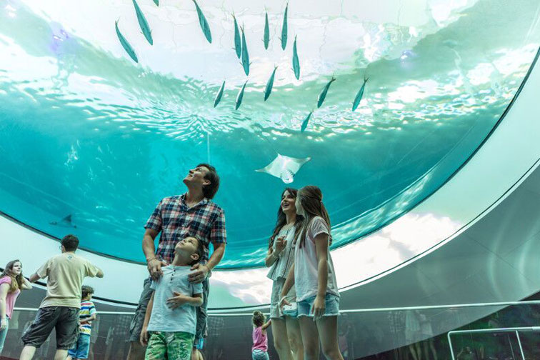 Miami Frost Museum; Courtesy of Greater Miami Convention and Visitors Bureau