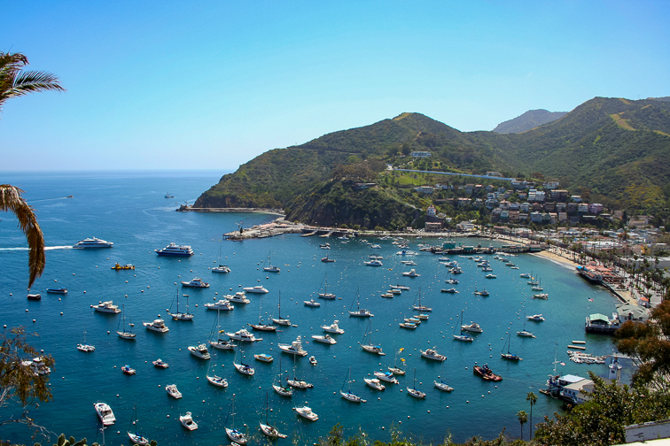 Avalon Bay on Santa Catalina Island off the coast of California.; Courtesy of Atomazul/Shutterstock