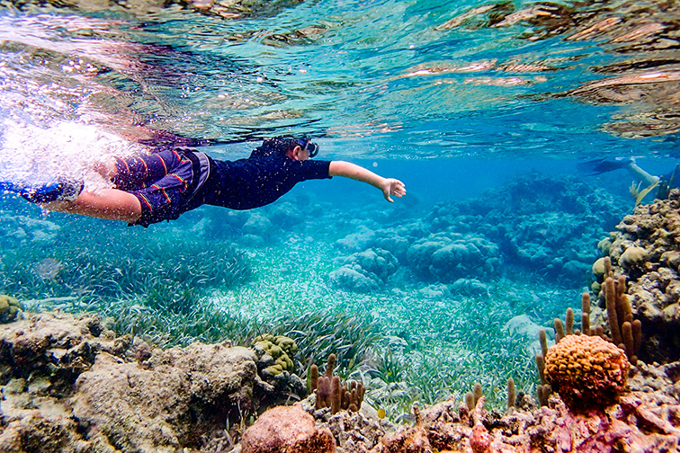 Underwater image of 7 year old boy snorkeling through coral reef near Ambergris Caye, Belize ;Courtesy of Ventu Photo/Shutterstock
