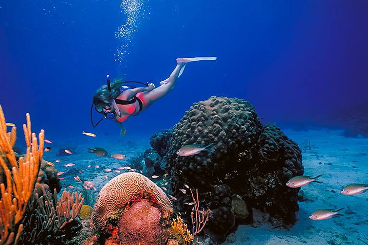 A scuba diving girl in a bikini poses above the coral reef in the warm waters at St. Croix Island in US Virgin Islands.; Courtesy of illstudio/Shutterstock