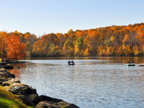Rocking Horse Ranch in the Fall; Courtesy of Rocking Horse Ranch