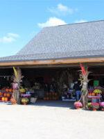 Nyes Apple Barn; Courtesy of TripAdvisor Traveler MBrown4059