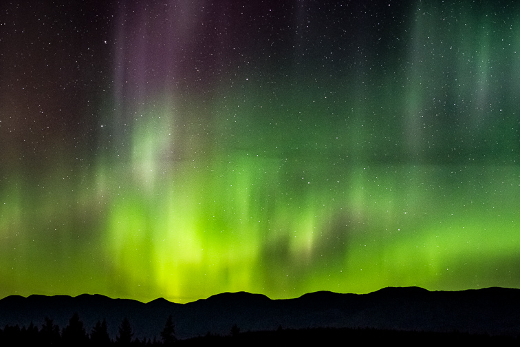 The Northern Lights over the Whitefish Mountain Range, Montana.; Courtesy of Zach Tanz/Shutterstock
