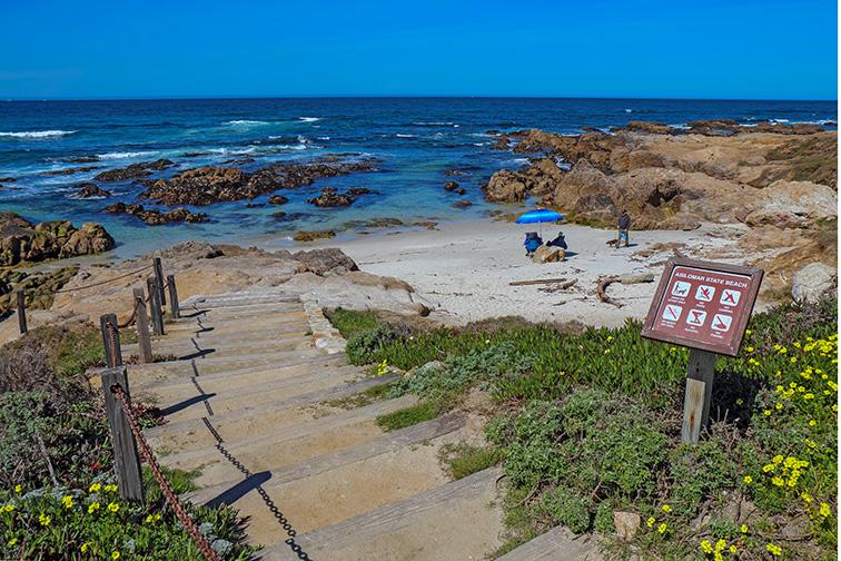 Asilomar State Beach, Monterey Peninsula; Courtesy of Shutterstock