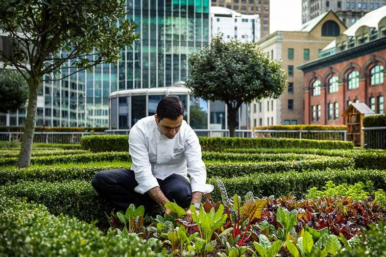 Fairmont Waterfront rooftop garden; Courtesy of Fairmont Waterfront