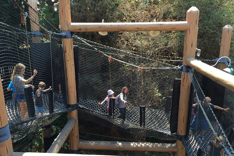 Redwood Creek challenge trail; Courtesy of TripAdvisor traveler/AlexanderD